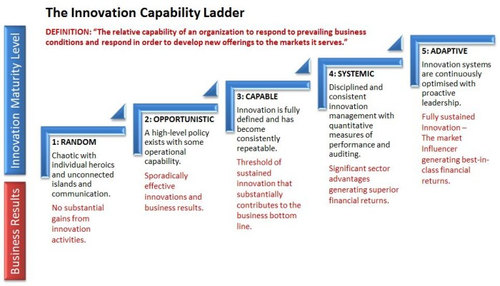 Innovation capability ladder